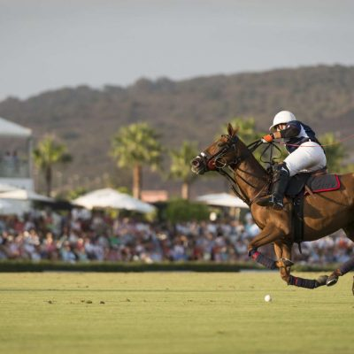 Encouraging polo in schools and universities across the United Kingdom header image